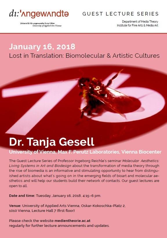 Artist Talk - Medientheorie: Tanja Gesell