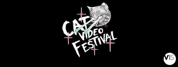 Cat Video Festival 2017