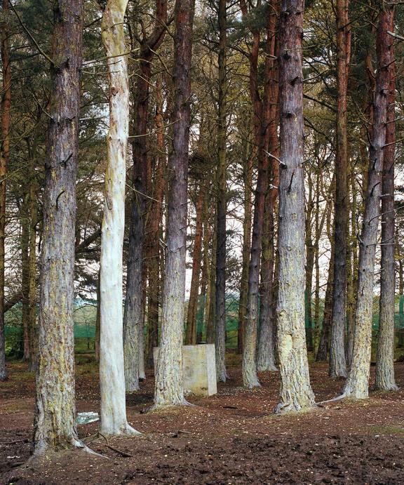Finissage Rudolf Strobl: Roadside Picnic