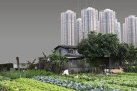 Führung: Hands-On Urbanism 1850 - 2012