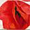 Josef Kern: Roter Mohn
